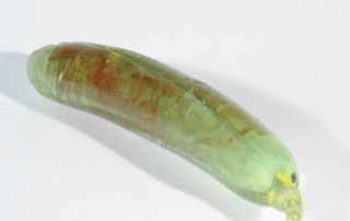 rombachs-glass-cavendish